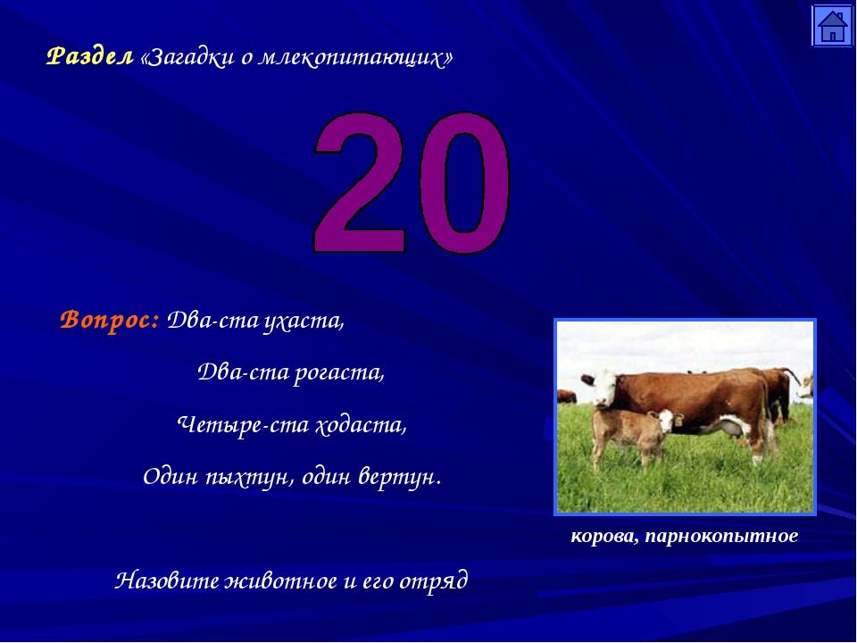 Раздел «Загадки о млекопитающих» Вопрос: Два-ста ухаста, Два-ста рогаста, Чет...