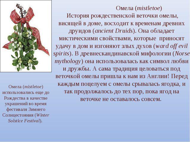 Омела (mistletoe) История рождественской веточки омелы, висящей в доме, вос...