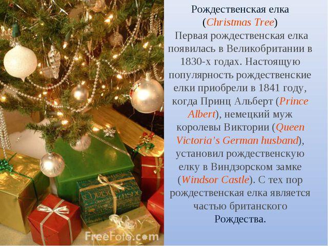 Рождественская елка (Christmas Tree) Первая рождественская елка появилась в В...