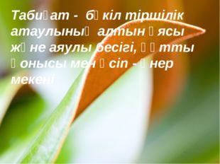 Табиғат - бүкіл тіршілік атаулының алтын ұясы және аяулы бесігі, құтты қонысы