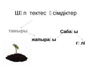 Шөп тектес өсімдіктер тамыры гүлі жапырағы Сабағы