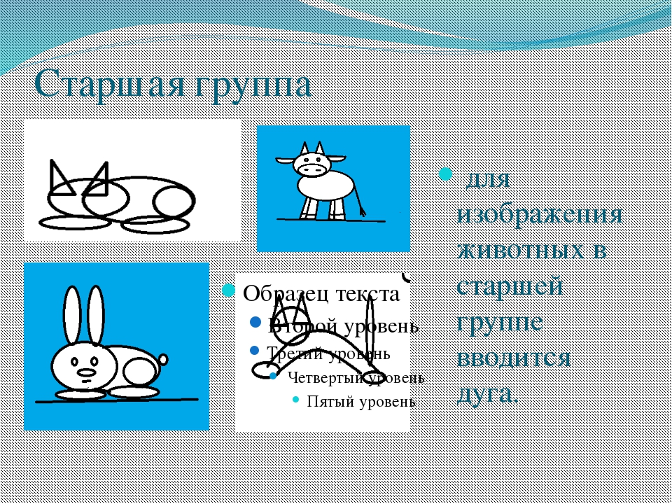 Старшая группа для изображения животных в старшей группе вводится дуга.