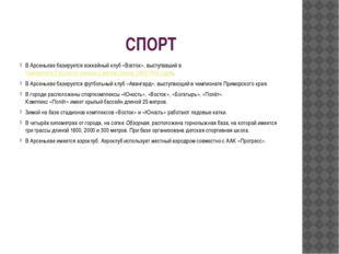 СПОРТ В Арсеньеве базируетсяхоккейныйклуб «Восток», выступавший вЧемпионат