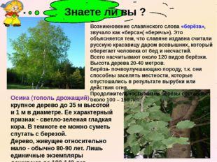 Осина (тополь дрожащий)- крупное дерево до 35 м высотой и 1 м в диаметре. Ее