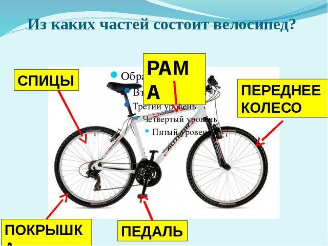 Из каких частей состоит велосипед? РАМА СПИЦЫ ПОКРЫШКА ПЕДАЛЬ ПЕРЕДНЕЕ КОЛЕСО
