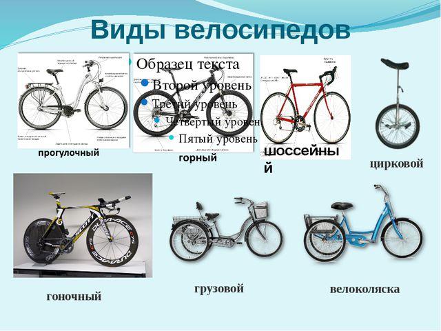 Виды велосипедов гоночный грузовой цирковой велоколяска шоссейный