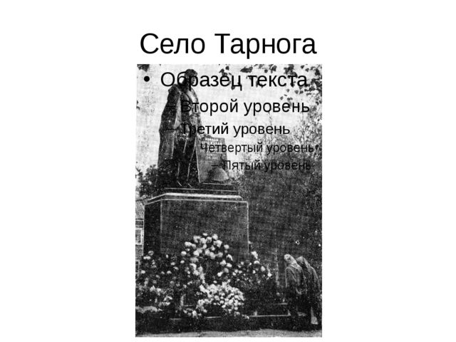 Село Тарнога