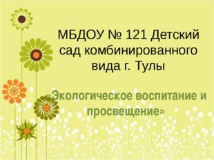 МБДОУ № 121 Детский сад комбинированного вида г. Тулы «Экологическое воспитан