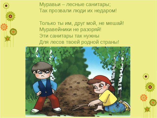 Муравьи – лесные санитары; Так прозвали люди их недаром!  Только ты им, друг...