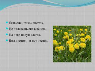 Есть один такой цветок, Не вплетёшь его в венок, На него подуй слегка, Был ц