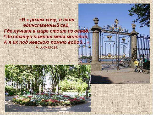 «Я к розам хочу, в тот единственный сад, Где лучшая в мире стоит из оград, Гд...