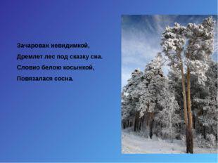 Зачарован невидимкой, Дремлет лес под сказку сна. Словно белою косынкой, Повя