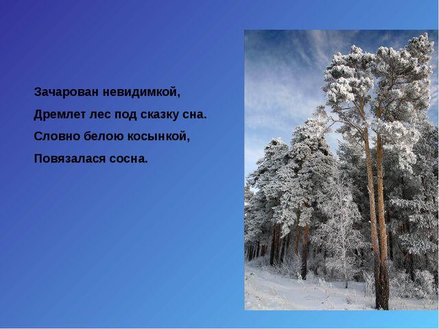 Зачарован невидимкой, Дремлет лес под сказку сна. Словно белою косынкой, Повя...
