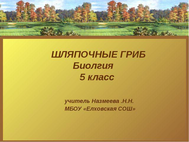 ШЛЯПОЧНЫЕ ГРИБ Биолгия 5 класс учитель Назмеева .Н.Н. МБОУ «Елховская СОШ»