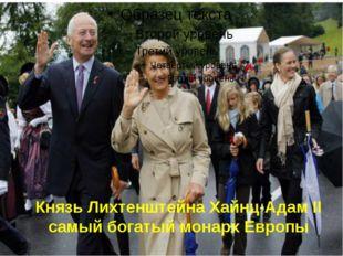 Князь Лихтенштейна Хайнц-Адам II самый богатый монарх Европы