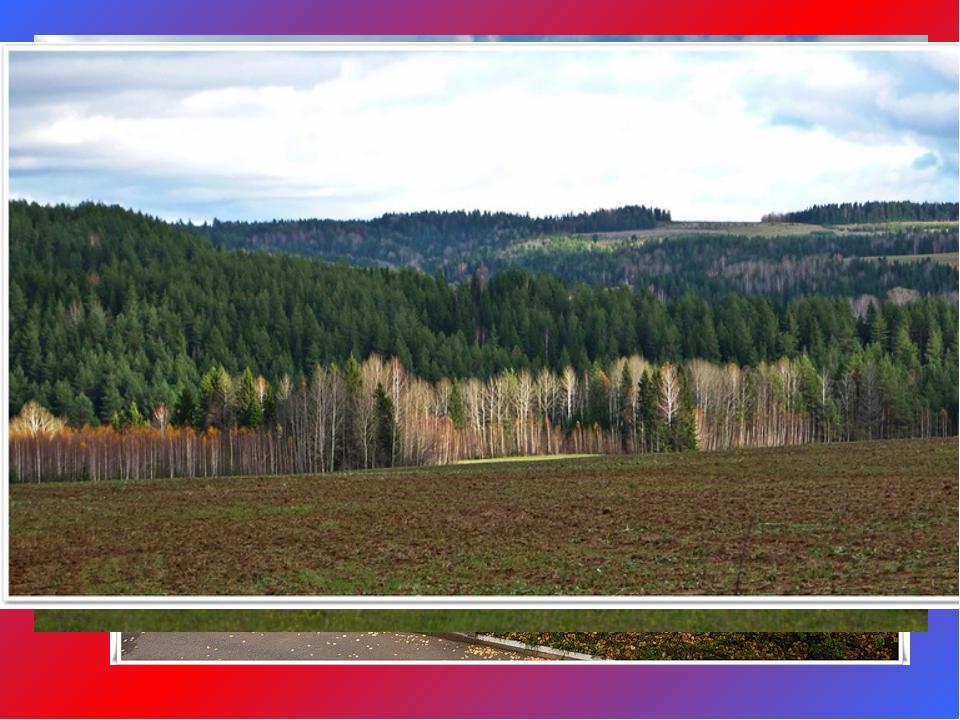 """Территория природного парка """"Шаркан"""" разделена на 5 функциональных зон: зона..."""