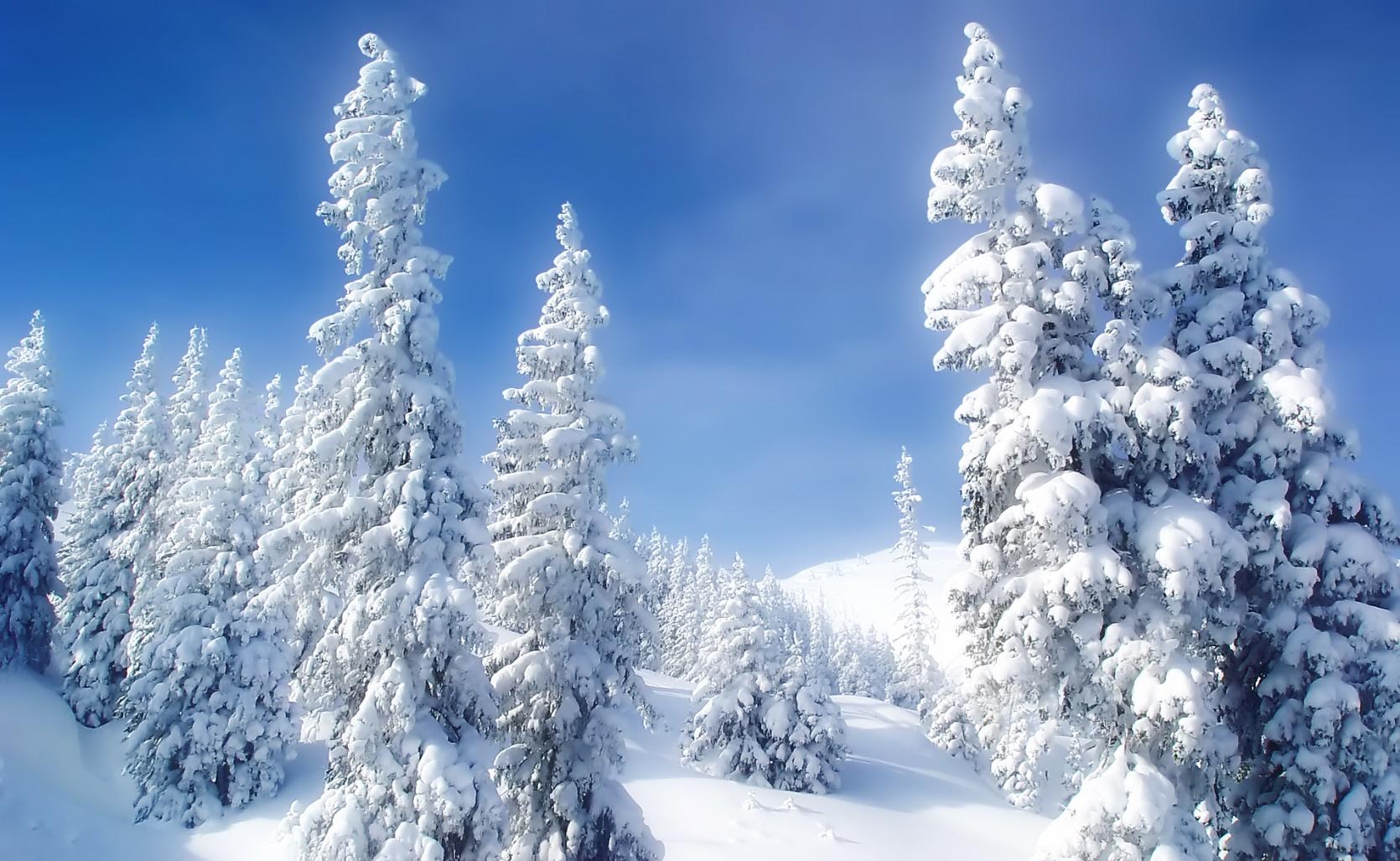 http://www.weegee.ro/work/4seasons/images/pictures/winter/Winter_Wonderland_1920.jpg