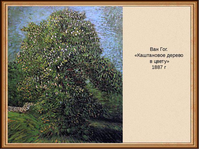 Ван Гог. «Каштановое дерево в цвету» 1887 г