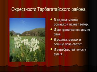 Окрестности Тарбагатайского района В родных местах ромашкой пахнет ветер, И д