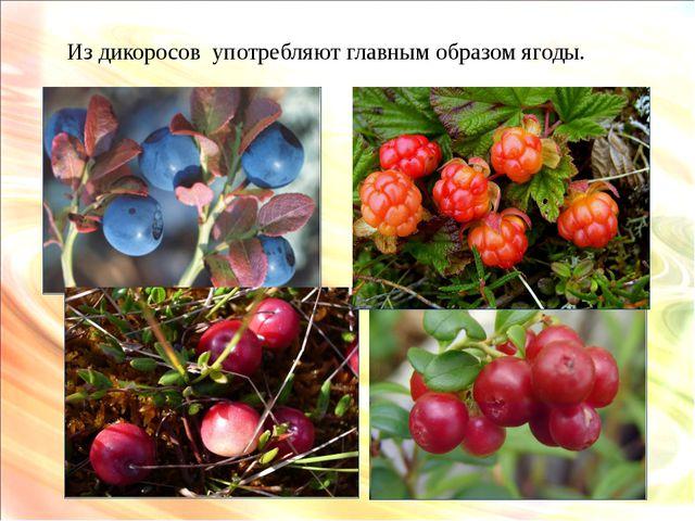Из дикоросов употребляют главным образом ягоды.