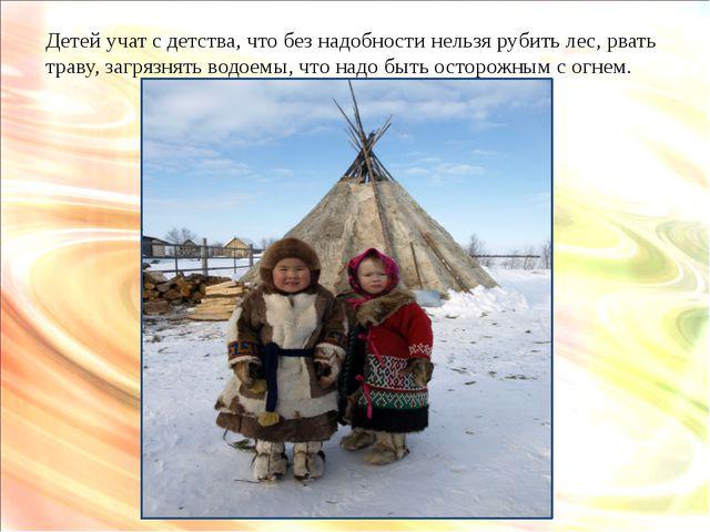 Детей учат с детства, что без надобности нельзя рубить лес, рвать траву, загр...
