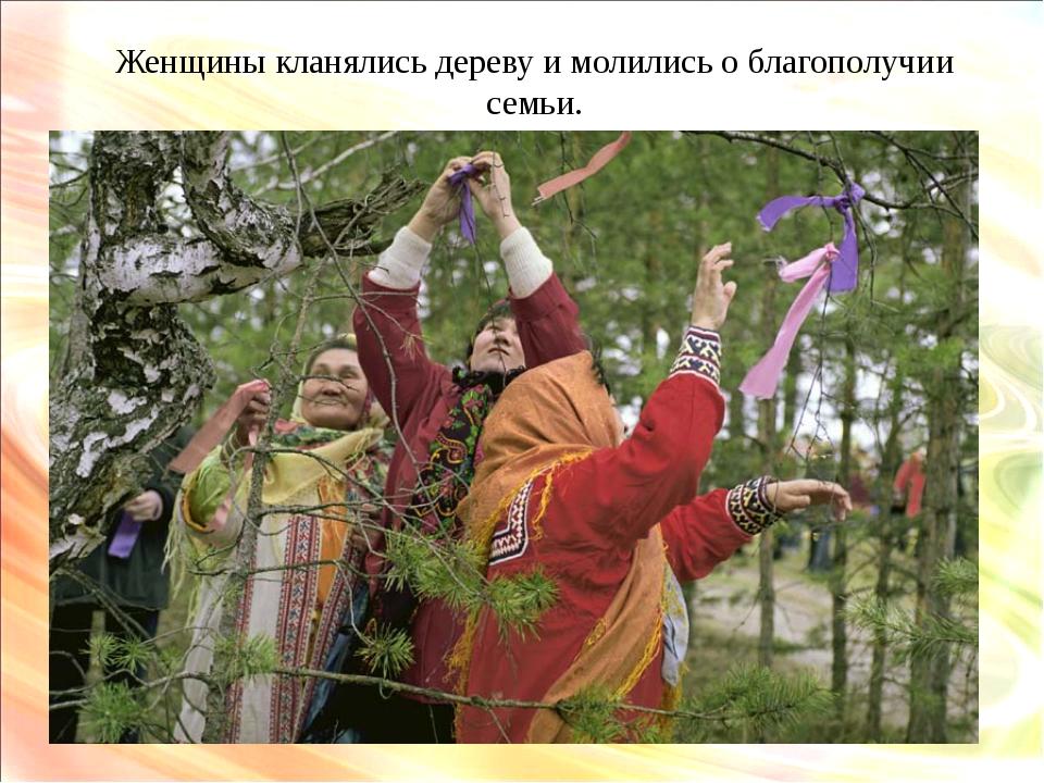 Женщины кланялись дереву и молились о благополучии семьи.