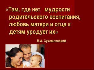 «Там, где нет мудрости родительского воспитания, любовь матери и отца к детям