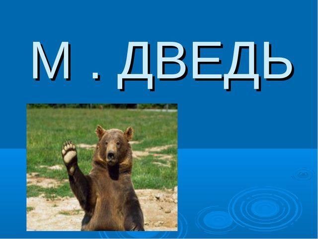 М . ДВЕДЬ