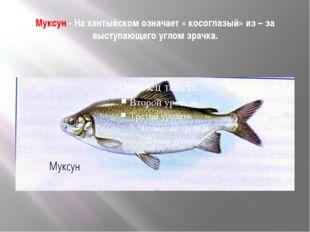 Муксун - На хантыйском означает « косоглазый» из – за выступающего углом зрач