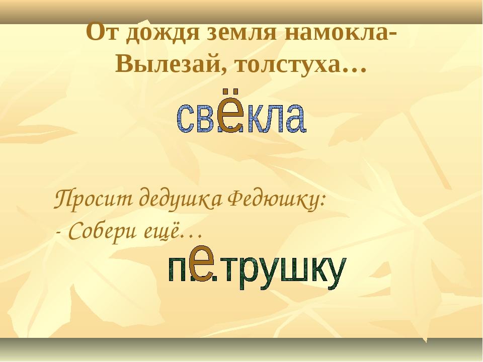 От дождя земля намокла- Вылезай, толстуха… Просит дедушка Федюшку: - Собери е...