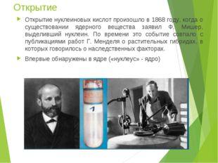 Открытие Открытие нуклеиновых кислот произошло в 1868 году, когда о существов