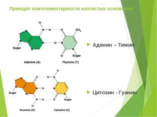 Принцип комплементарности азотистых оснований Аденин – Тимин Цитозин - Гуанин