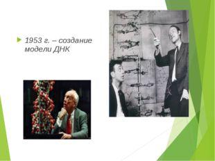 1953 г. – создание модели ДНК
