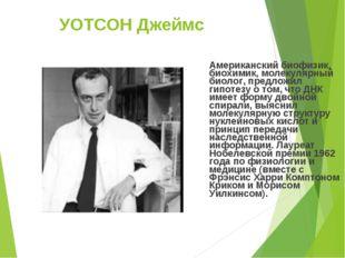 УОТСОН Джеймс Американский биофизик, биохимик, молекулярный биолог, предложил