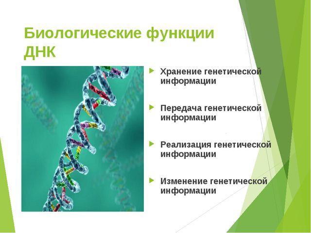 Биологические функции ДНК Хранение генетической информации Передача генетичес...