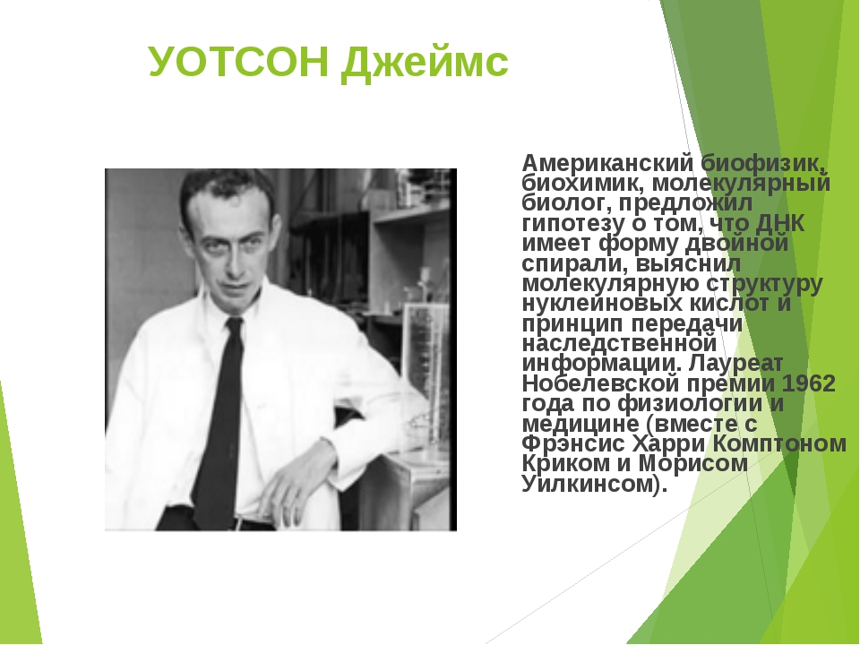 УОТСОН Джеймс Американский биофизик, биохимик, молекулярный биолог, предложил...