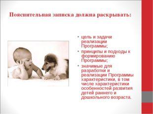 Пояснительная записка должна раскрывать: цель и задачи реализации Программы;