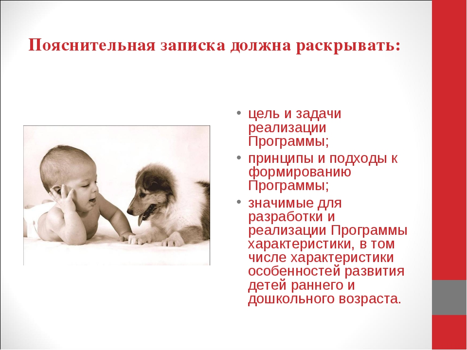 Пояснительная записка должна раскрывать: цель и задачи реализации Программы;...
