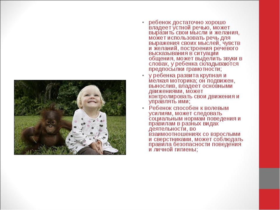 ребенок достаточно хорошо владеет устной речью, может выразить свои мысли и ж...