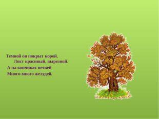 Весной растет, летом цветет, Осенью осыпается, зимой отсыпается. А цветок-то