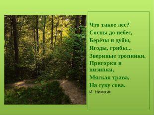 По старинному русскому обычаю мы приветствуем храм Природы: поклонимся вправ