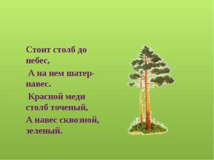 Информационные источники http://slavclub.ru/zagadki/zivotnie/1341-lisichki.ht