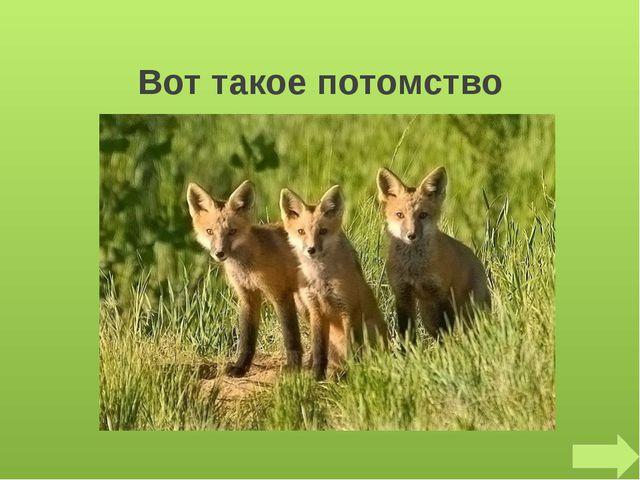 Что за зверь лесной, Встал, как столбик, под сосной, И стоит среди травы, Уши...