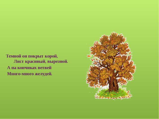 Весной растет, летом цветет, Осенью осыпается, зимой отсыпается. А цветок-то...
