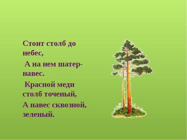 Информационные источники http://slavclub.ru/zagadki/zivotnie/1341-lisichki.ht...