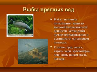 Рыбы пресных вод Рыба – источник питательных веществ высокой биологической це