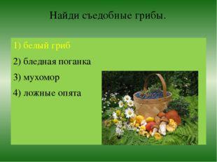 Найди съедобные грибы. 1) белый гриб 2) бледная поганка 3) мухомор 4) ложные