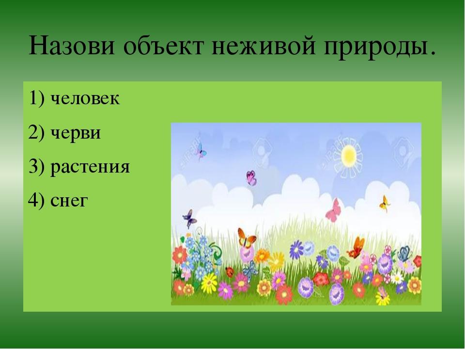 Назови объект неживой природы. 1) человек 2) черви 3) растения 4) снег
