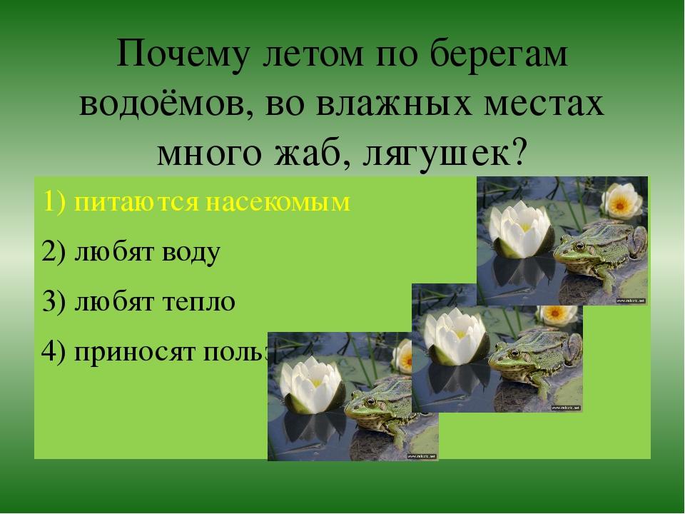 Почему летом по берегам водоёмов, во влажных местах много жаб, лягушек? 1) пи...