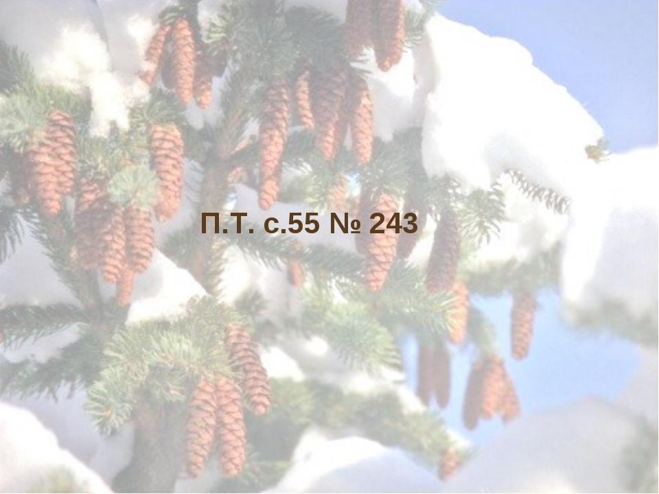 П.Т. с.55 № 243